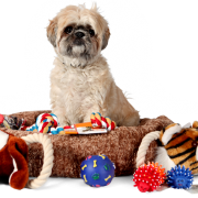 pet grooming franchise